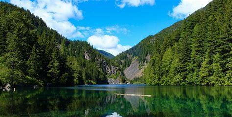 fotos para perfil naturaleza hoy se celebra el d 237 a mundial de la naturaleza