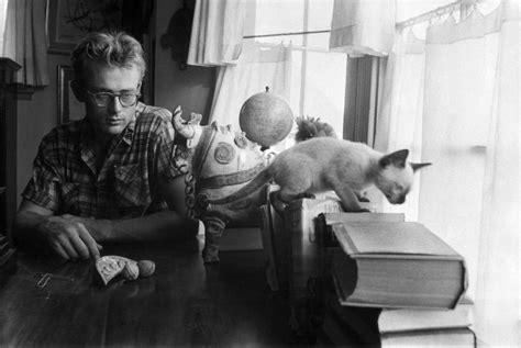 Iphone 66s Pets Rock Hepburn dean with the siamese cat 1955 oldschoolcool