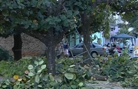 g1 homem leva choque ao podar 225 rvore na porta de casa