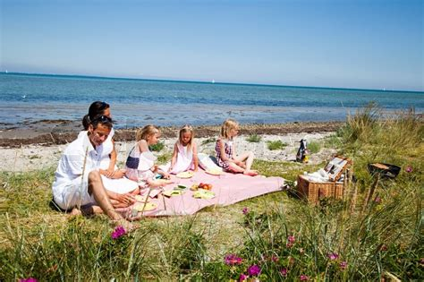 Scandinavian Home Plans by Family Summer Picnic In The Beach Stock Photo Colourbox