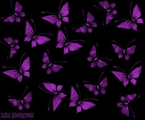 imagenes de rosas moradas con movimiento mariposas rosas y moradas con movimiento imagui
