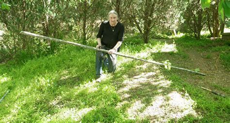 how to make a spear in the wilderness how to make an atlatl for wilderness survival