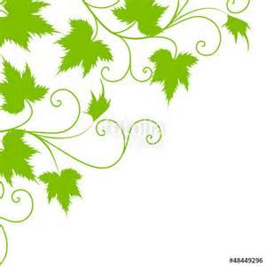 wein dekoration quot blatt deko wein weinblatt ranke textur vektor