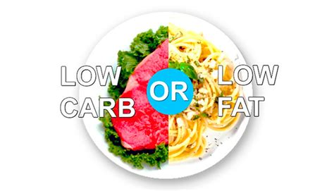 23 studies on low carb and low fat diets time to retire which diet works best best personal trainer nyc