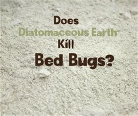 Diatomaceous Earth To Kill Bed Bugs by Diatomaceous Earth As A Treatment For Bedbugs Useful