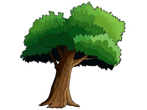 comic tree 2d trees