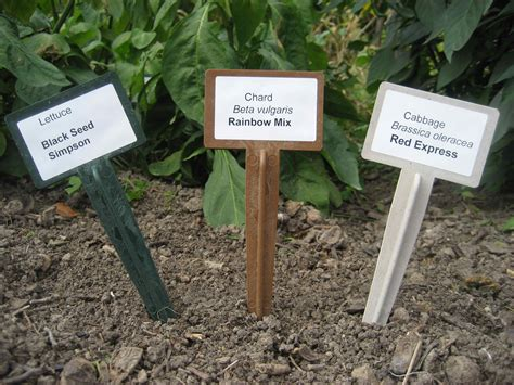 Gardening Labels Plant Labels For The Enthusiastic Gardener