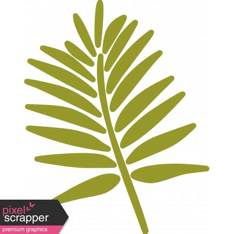palm branch template palm branch illustration template 02 graphic by