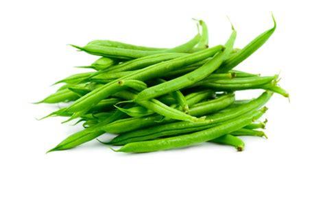 cuisiner des haricots verts surgel駸 cuisiner des haricots verts en boite haricots verts kraft