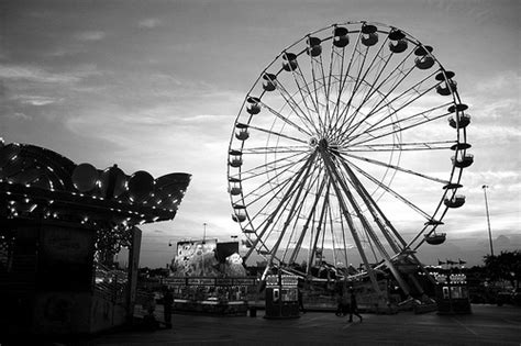 tumblr themes photography black and white b w black white black and white cute image