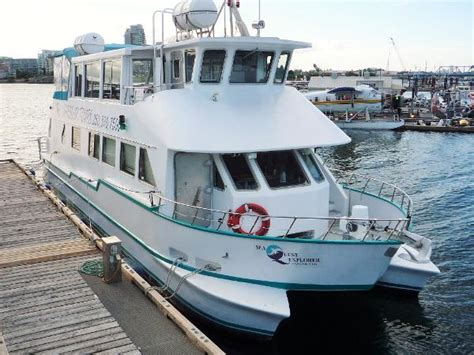 power catamarans for sale in canada power catamaran boats for sale in canada boats