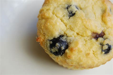 grain free food recipes a simple real food recipe grain free blueberry breakfast muffins the simple