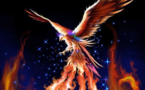 the phoenix and the phoenix rising quotes quotesgram