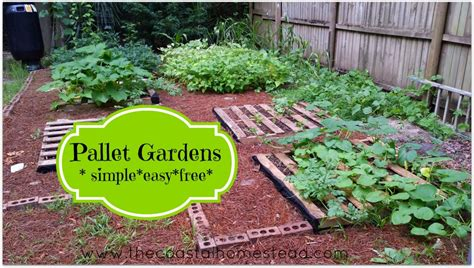 simple gardens pallet gardens simple easy free the coastal homestead