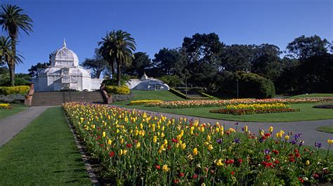 Robert San Francisco Sf State Mba Linkedin by San Francisco 10 Things To Do 6 Golden Gate Park Time