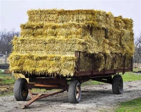 Kaos Aacx Historical Bale 3 Tx 65 best hay images on hay bales straw bales and hay