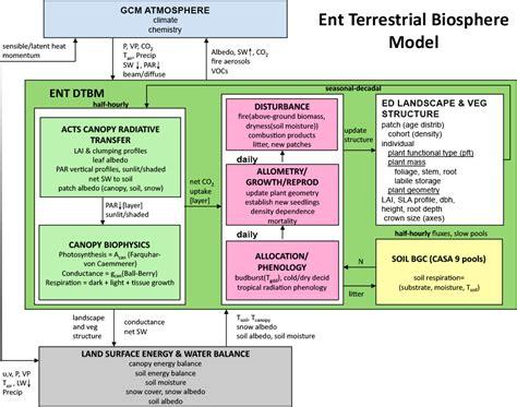 Ent Diagram