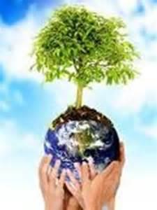 ambiente len compromisos con el entorno junio 2011