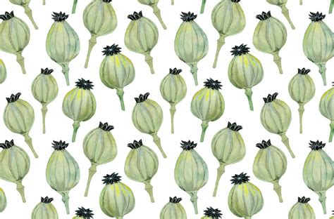 botanical pattern ai botanical patterns by luisa rivera