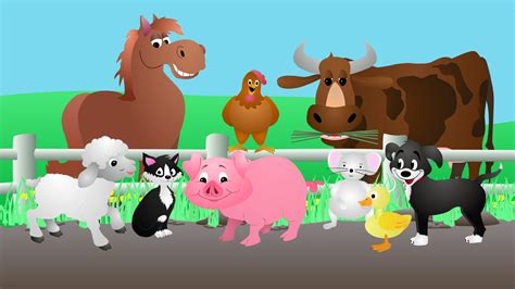 animal sounds song youtube