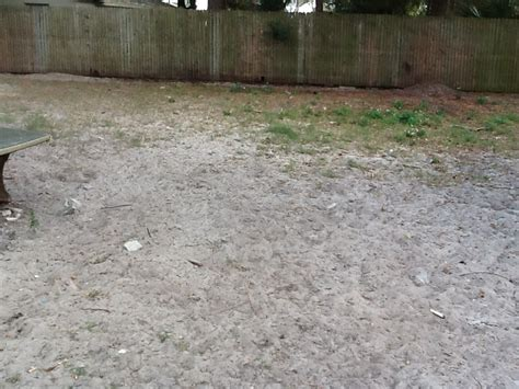 how to cover up mud in backyard 29 superb landscaping ideas for muddy backyard izvipi com
