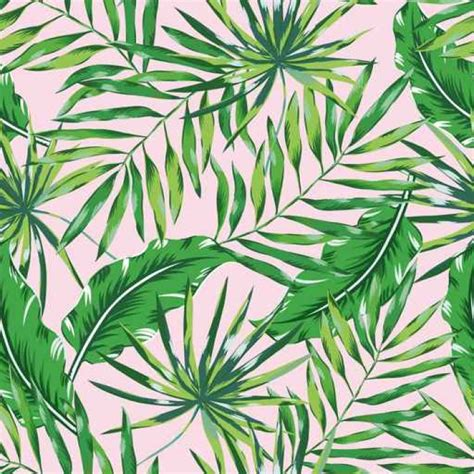 jungle pattern vector green palm leaves on the pink background vector seamless