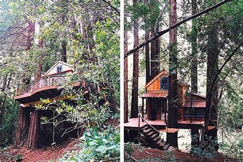 Cing Cabins Northern California by 17 Best Images About Tree House On Longwood Gardens Treehouse Hotel And House