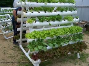 How To Build A Vertical Vegetable Garden How To Build Small Pvc Pipe Vertical Vegetable Garden