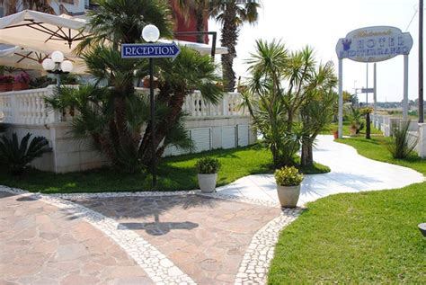 porto cesareo hotel mediterraneo hotel mediterraneo porto cesareo