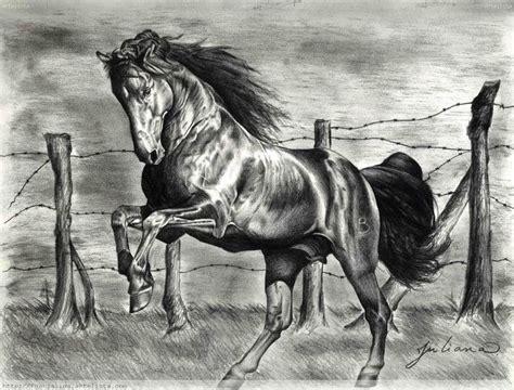 blanco y negro pintura lineal dibujar caballo ilustraci 243 n este dibujo es una t 233 cnica seca hecha a grafito su autora