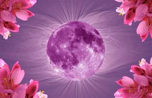 pink moon april april 2017 pink full moon in libra and 5 planet
