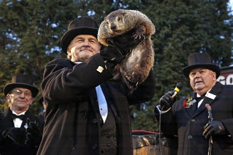 groundhog day news groundhog day punxsutawney phil predicts more winter