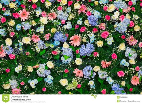 Beautiful Flower Decoration by Beautiful Flower For Wedding Decoration Stock Photo