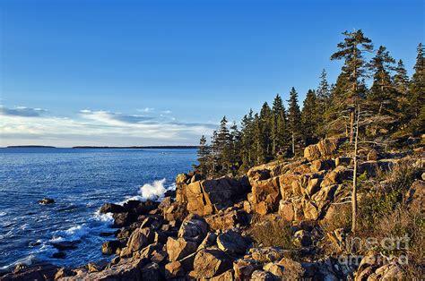 Coastal Home Decor by Coastal Maine Landscape Photograph By John Greim