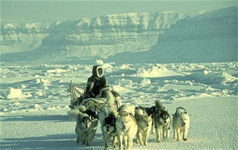 i am inuit portraits of places and of the arctic books the arctic transportation migration