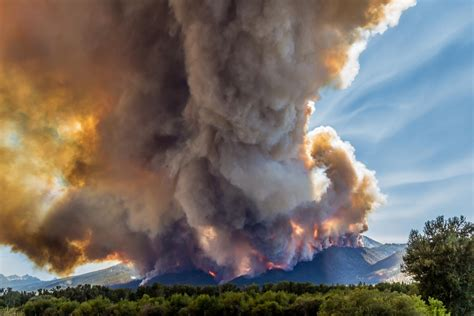 c fires of a naturalist the story of fourteen expeditions after american mammals classic reprint books climate change has doubled western us forest fires