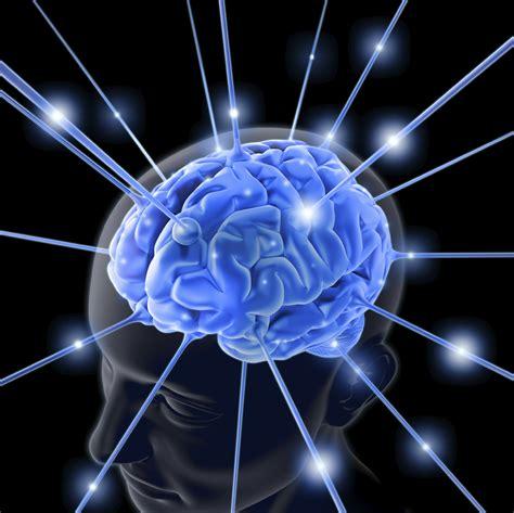 What Is The Purpose Of Background Information In An Essay by Menselijk Brein Kan Groeien Zoninjeleven Nl
