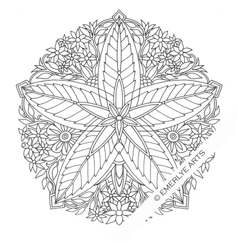 leaves coloring pages for adults cynthia emerlye vermont artist and life coach five leaf