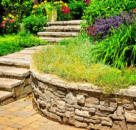 home clean cut landscaping