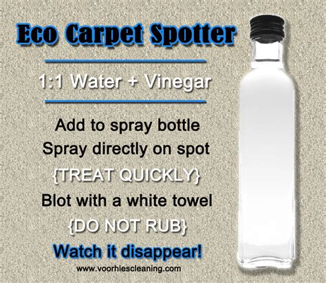 vinegar in rug doctor clean carpet vinegar floor matttroy