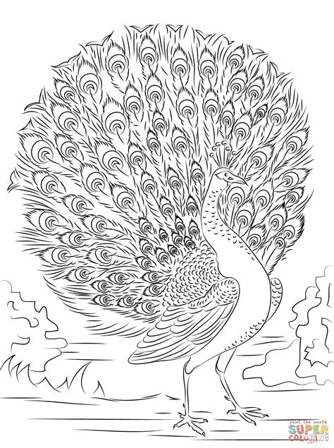 advanced coloring pages advanced coloring pages free coloring home