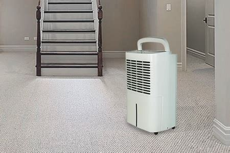 basement dehumidifiers our recommendations sylvane