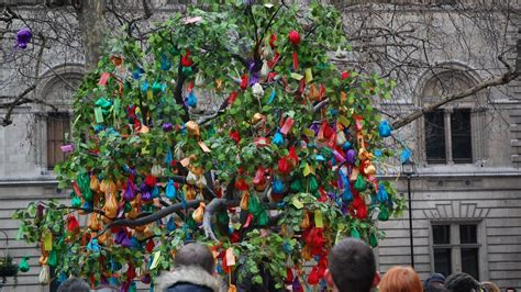 new year wishing tree tradition news in pictures s new year celebrations
