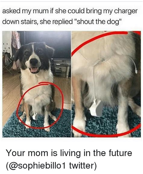 Dog Mom Meme - asked my mum if she could bring my charger down stairs she replied shout the dog your mom is