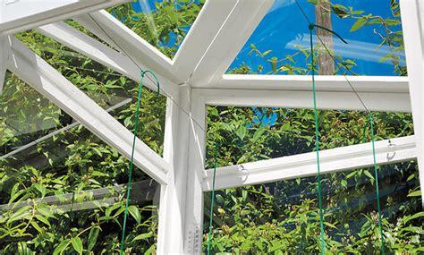Tomaten Im Gewächshaus Pflanzen 4715 by Gew 228 Chshaus Balkon Selbst De