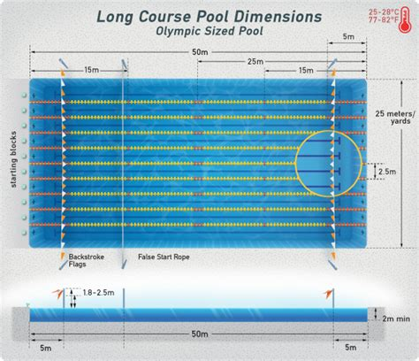 length of lap pool lap pool length home planning ideas 2018