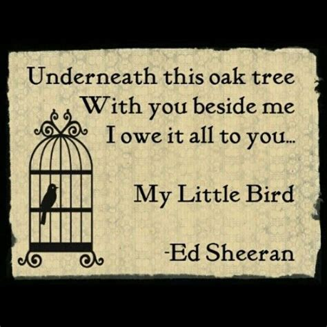 download mp3 ed sheeran little bird 50 best images about thigh tattoo on pinterest wolves