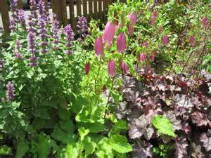 Planting A Perennial Flower Garden Home Joys Frugal Gardening Tip 4 Plant Perennials