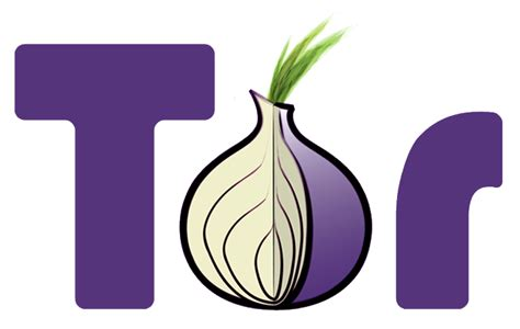 onion tor file tor project logo hq png wikimedia commons