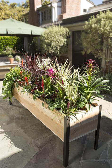 planter design planter boxes standing height cedar raised garden